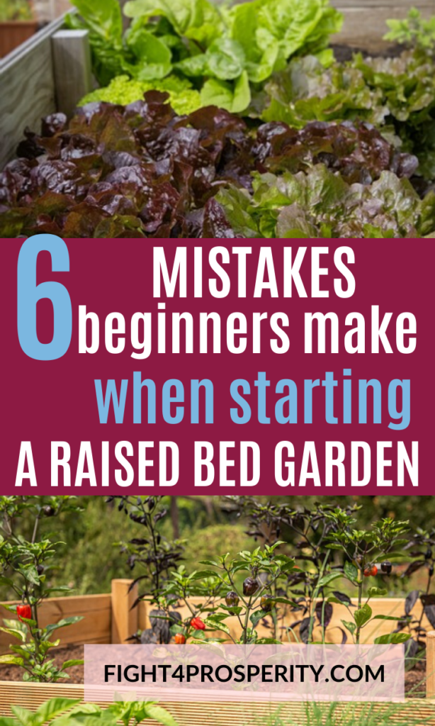 Raised Garden Bed Mistakes